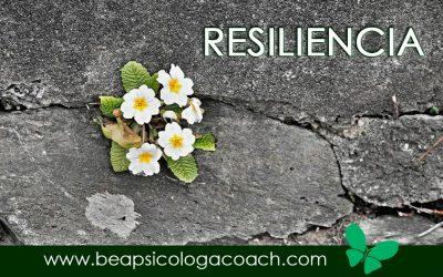 Resiliencia, una de las claves para manejar el estrés