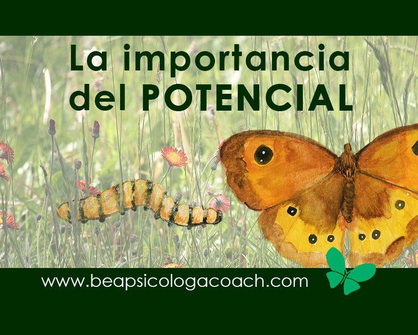 AUTOESTIMA: Transformación y potencial del desarrollo personal
